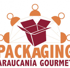 WORKSHOP INTERNACIONAL PACKAGING MATERIAL DESCARGABLE (2)